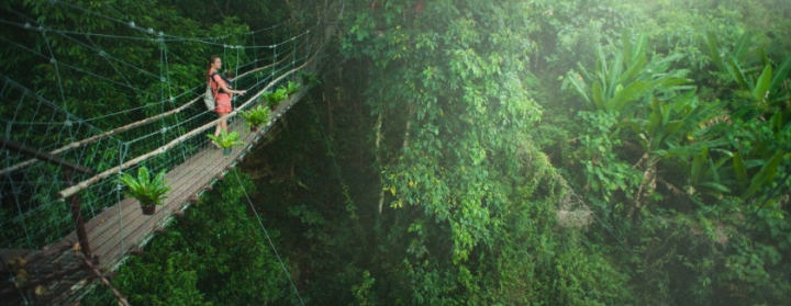 A woman carrying a baby on a hanging bridge looks out over the Atlantic forest in Brazil