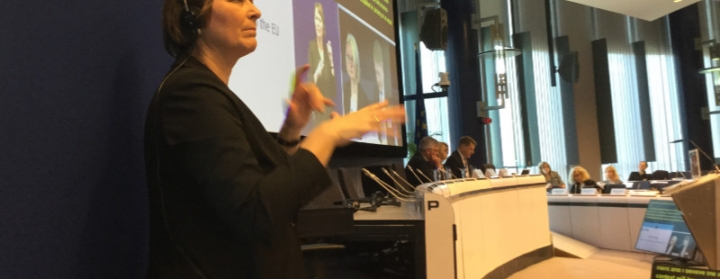Maya sign-language interpreting at the European Commission