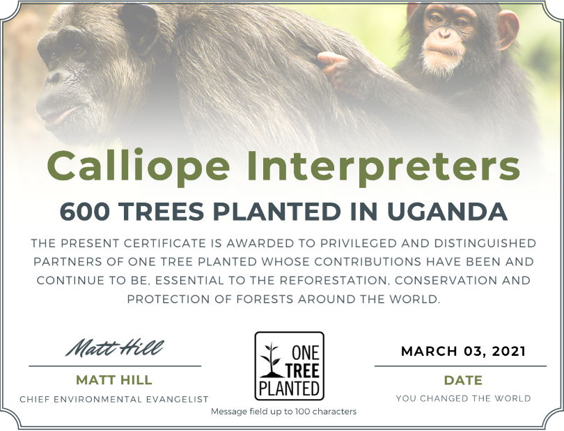 Calliope's conference interpreters choose to plant trees to offset their digital carbon footprint